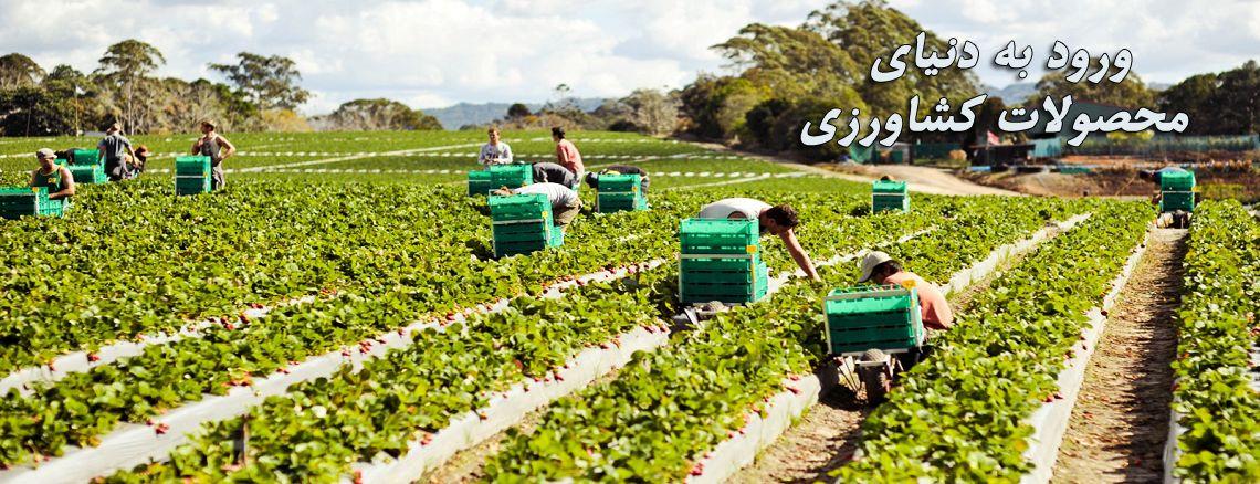 ورود به دنیای محصولات کشاورزی