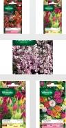 بذر گل های ویلمورین