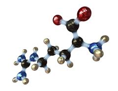 آمینو اسیدها