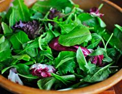 بذر سبزیجات برگی