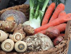 بذر سبزیجات غده ای