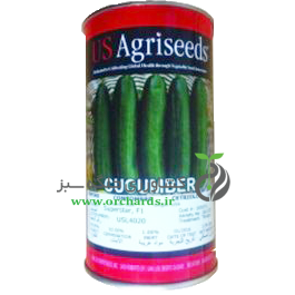 بذر خیار ماهان یو اس اگرسیدز (Us Agriseeds)