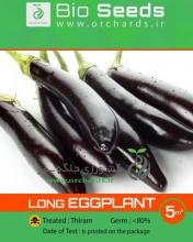 بذر بادمجان قلمی Bio Seeds