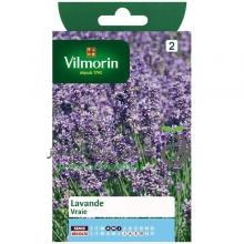 بذر اسطخدوس ویلمورین vilmorin