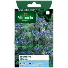 بذر گل گاوزبان ویلمورین  vilmorin