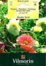 بذر گل ناز فرانسوی ویلمورین vilmorin
