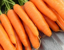 بذر هویج سوپر نانتس(پاکت 100گرمی)