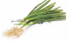 بذر پیازچه سفید ( بسته بندی 1 کیلویی )
