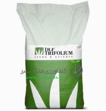 بذر چمن دی ال اف DLF(بسته 1 کیلوگرمی)