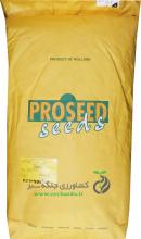 بذر لوبیا پروسید ( بسته 1 کیلوگرمی)