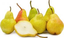 Pear seedlings of seed-based fruit