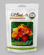 بذر گل شقایق کالیفرنیا الوان گلبرگ پامچال